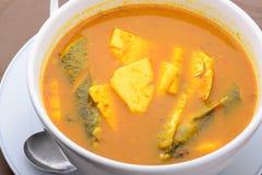 De Thaise vissen van de voedselnaam en de Gebraden zure soep van de kokosnotenspruit Stock Fotografie