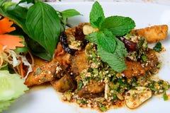 De Thaise voedselnaam is gebraden vis met kruidige salade Stock Afbeelding