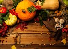 De thanksgiving de jour toujours la vie Photos stock
