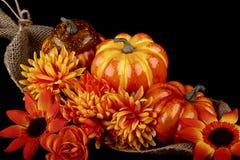 De thanksgiving toujours la vie Photo stock
