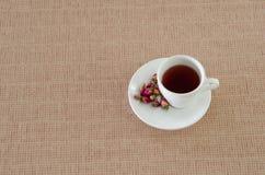 De thee die van thee wordt gemaakt nam bloemblaadjes toe Royalty-vrije Stock Foto's