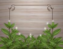 De thee doorbladert op hout met kader vectorontwerp Royalty-vrije Stock Afbeelding
