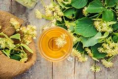 De thee en de bloemen van de linde Royalty-vrije Stock Fotografie