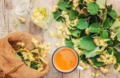 De thee en de bloemen van de linde Royalty-vrije Stock Foto's