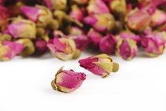 De thee nam bloemen op wit toe Royalty-vrije Stock Fotografie