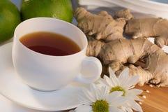 De thee van de gember Stock Foto