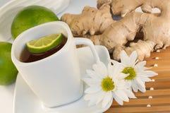De thee van de gember Stock Fotografie