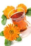De thee van de goudsbloem Stock Fotografie