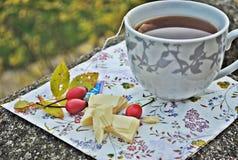 De thee van de herfst het drinken Stock Fotografie