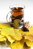De thee van de herfst met kaneel Stock Fotografie