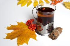 De thee van de herfst met kaneel Stock Afbeelding