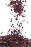 De Thee van de hibiscus Royalty-vrije Stock Foto's