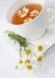 De thee van de kamille Royalty-vrije Stock Foto