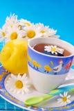De thee van de kamille en van de citroen voor kind Stock Foto