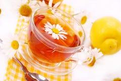 De thee van de kamille in glas Stock Foto's