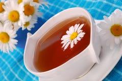 De thee van de kamille in witte kop Royalty-vrije Stock Fotografie