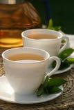 De thee van de munt Royalty-vrije Stock Foto's