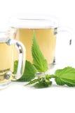 De thee van de netel stock afbeelding