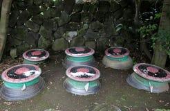 De thee van Fructusschisandrae Stock Afbeelding