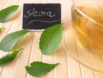De thee van Stevia stock foto