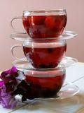 De theeën van het fruit met fruit en bloemen Royalty-vrije Stock Afbeeldingen