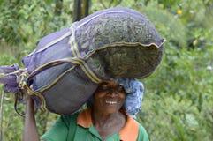 De Theeplukker van Srilankan Stock Foto