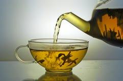 De theepot van het glas en theekop Royalty-vrije Stock Afbeelding
