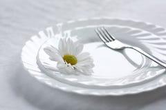 De theorie van het correcte voeden. royalty-vrije stock fotografie