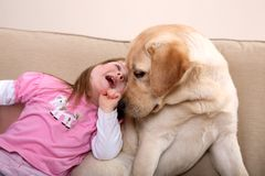De Therapie van de hond royalty-vrije stock afbeeldingen