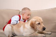 De Therapie van de hond Stock Foto