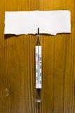 De thermometer van het kwik royalty-vrije stock foto's