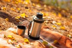 De thermosfles is op de deken in de herfstpark Royalty-vrije Stock Foto