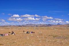 De Tibetaanse mening van Himalayagebergte royalty-vrije stock foto's