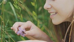 De tiener bewondert een mot op een bloem De warme Dag van de Zomer stock footage