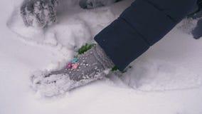 De tiener graaft groen mos van de sneeuw op stock footage