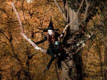De tiener kleedde zich in de zitting van het heksenkostuum op de boom Stock Foto