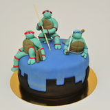 De tienercake van Ninja Mutant Turtles Royalty-vrije Stock Foto