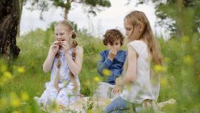 De de tienerjarenmeisjes en jongen eten pizza op picknickzitting op weide onder wildflowers stock footage