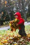 De tijd van de herfst Stock Foto
