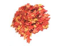 De tijd van de herfst Stock Afbeeldingen