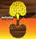 De tijd van de herfst van het jaar Royalty-vrije Stock Afbeelding