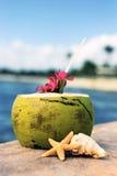 De tijd van de kokosnoot Royalty-vrije Stock Afbeeldingen