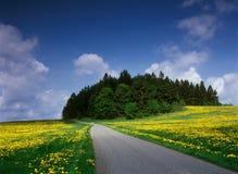 De tijd van de lente in Midden-Europa. Stock Foto