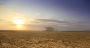 De tijd van de oogst stock fotografie