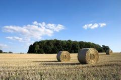 De tijd van de oogst. Royalty-vrije Stock Foto