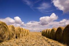 De tijd van de oogst in Alentejo Royalty-vrije Stock Afbeeldingen