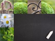 De tijd van de tuin Royalty-vrije Stock Foto