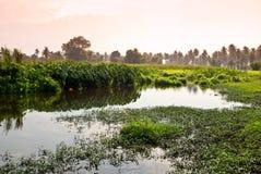 De tijd van de zonsondergang op moerasgebied Stock Fotografie