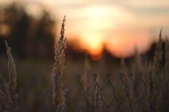 De tijd van de zonsondergang stock foto