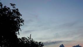 De tijdspanne van de de hemeltijd van de snelheidsnacht met boom stock footage